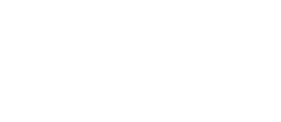 Rave In Fire logo